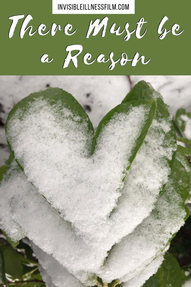 Heart Shaped Snow Covered Leaf